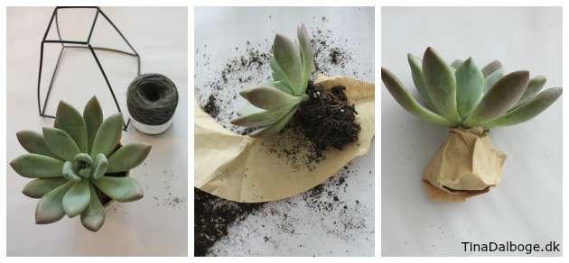 DIY Planteholder med Kokedame