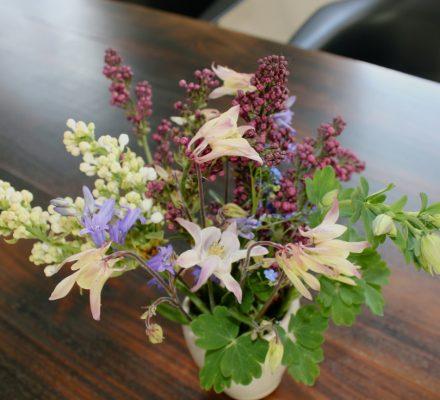 blomster og syrener fra haven