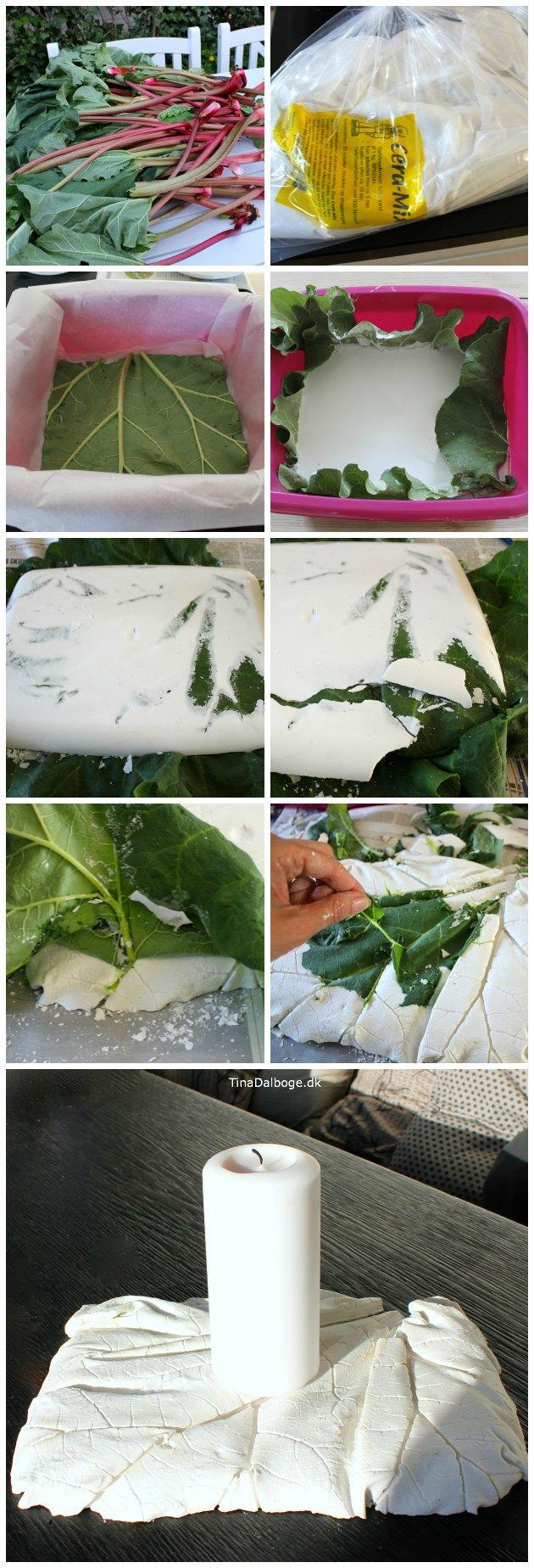 støbning med rabarberblade