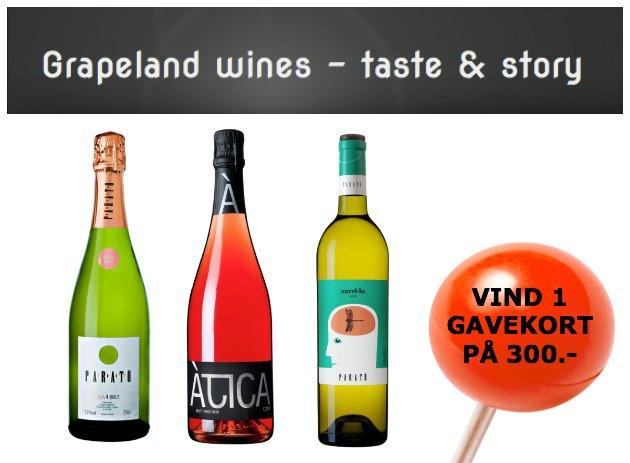 Vinflasker fra shoppen grapeland.dk-1