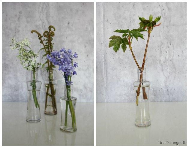 blomster i maj måned til bordpynt tinadalboge.dk