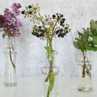 se idéer med blomster og planter