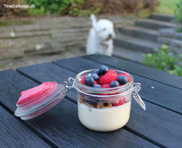 dessert der er let at lave med bær og is i glas med låg