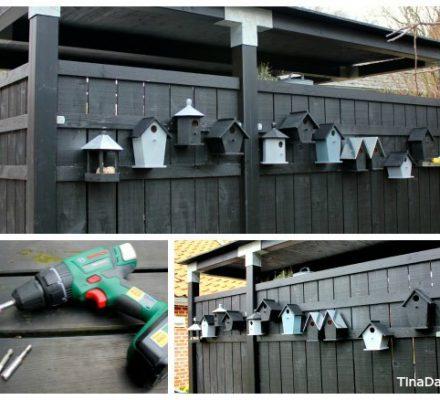 fuglekasser mejsekasser foderbræt til fugle i haven