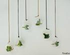 glaskugler-brugt-som-ophaeng-med-sma%cc%8a-planter-i-featured-image