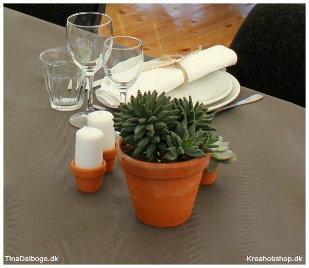 ide til fest bordpynt med planter og sukkulenter i terracottapotter