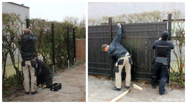 montering af stolper og rustik hegn fra plus tinadalboge