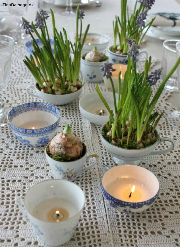 påskepyntet frokostbord med perlehyacinter fra Tina Dalbøges kreative blog