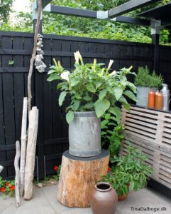 terrasse med udekøkken bygget af traller og stilladsplader med drivtømmer og trompetplante