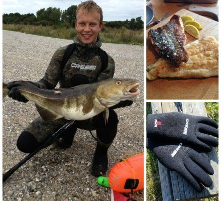 uv-jagt med harpun. Her skudt en stor torsk - Cressi fra dykaarhus.dk