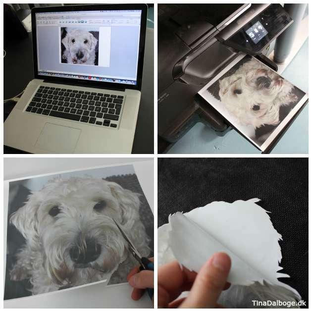 DIY tryk på pude med kæledyr