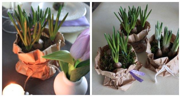anderledes skjuler til blomster, løgplanter og planter brug en papirspose i stedet for en urtepotte papirsposer fra kreahobshop
