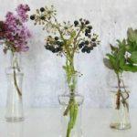 blomster og planter tinadalboge