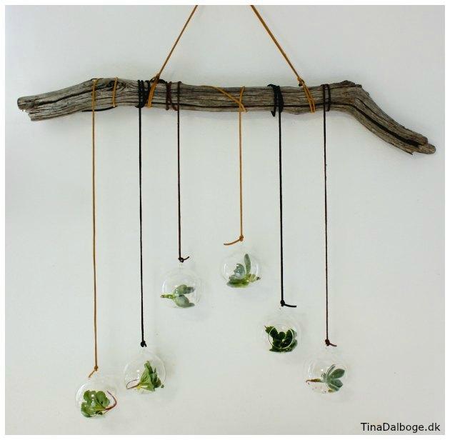glaskugler brugt som ophæng med små planter i