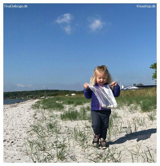 hvad kan man lave med strandskaller tinadalboge