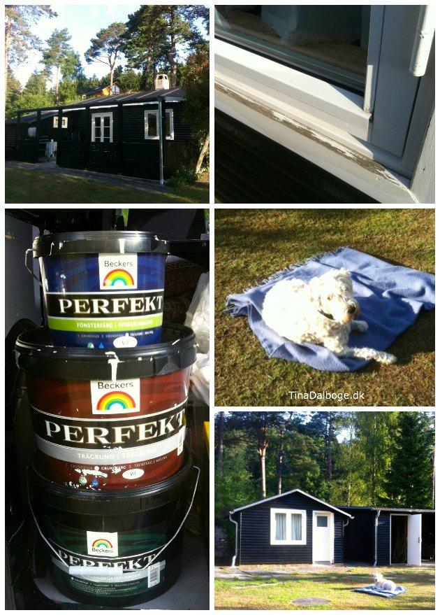 hvordan maler man vinduer og andet gammelt træværk