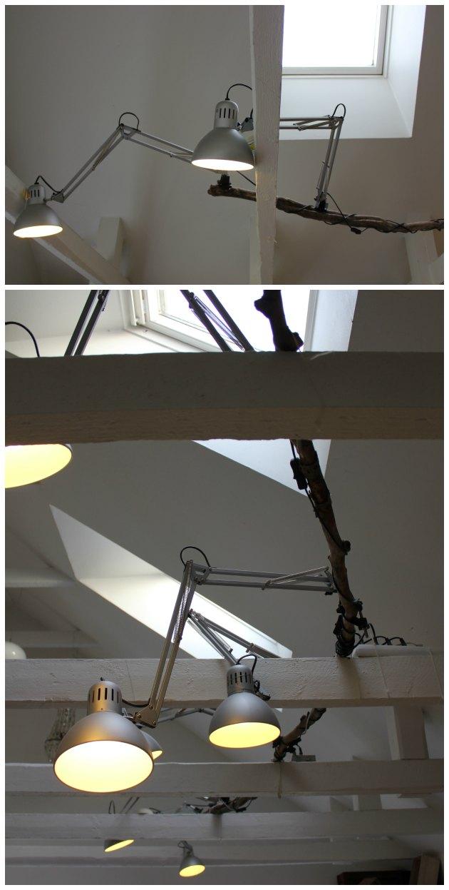 lang gren fra skoven brugt til at hænge arkitektlamper på