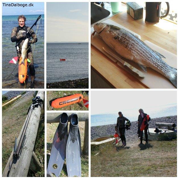 uv-jagt med harpun er både for mænd og kvinder - dykaarhus.dk